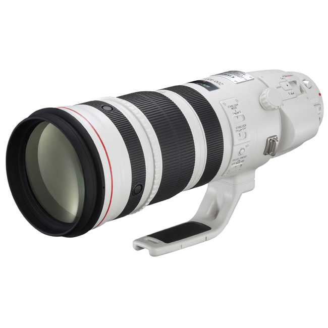Canon obiettivo EF 200-400mm f4L IS USM Extender 1.4x